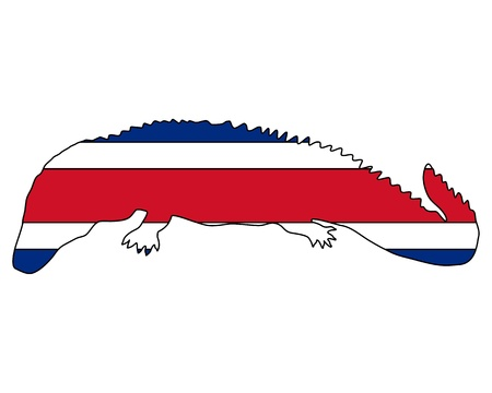 caiman: Caiman Costa Rica Illustration