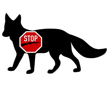 Stop shoot  fox Vector