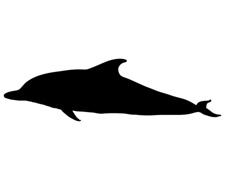Dolphin silhouette Stock Vector - 9198233