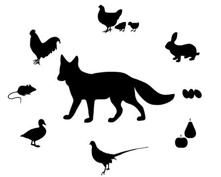 Fox diet Vector