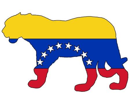 panthera: Jaguar Venezuela