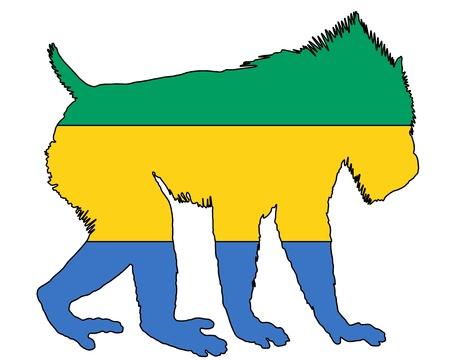 mandrill: Mandrill Gabon