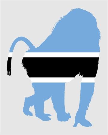 botswana: Baboon botswana Illustration