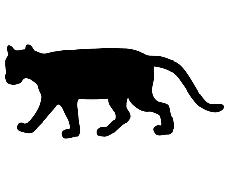 black panther: Cougar silhouette