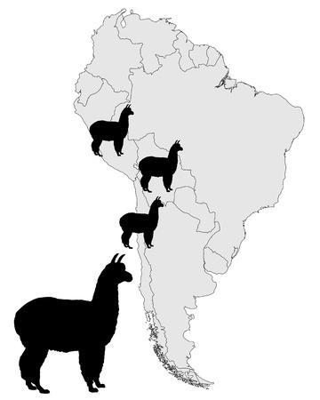 Alpaca range map Vector