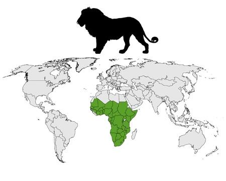 panthera: Distribuzione di Leone Vettoriali