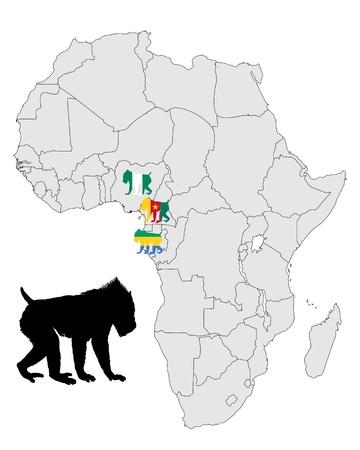 mandrill: Mappa di gamma mandrillo