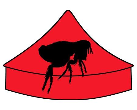 flea: Flea circus  Illustration