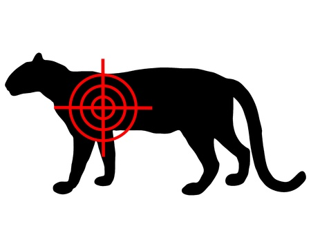 panthera pardus: Leopard crosslines Illustration