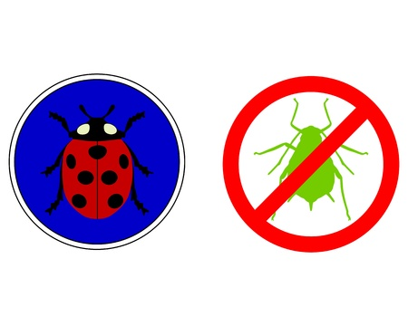 coccinellidae: Aphid ladybird traffic signs