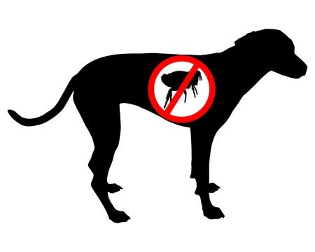 flea: Signo de prohibici�n de pulgas de perro