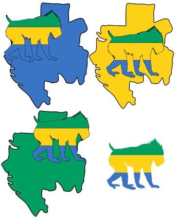 gabon: Mandrill Gabon
