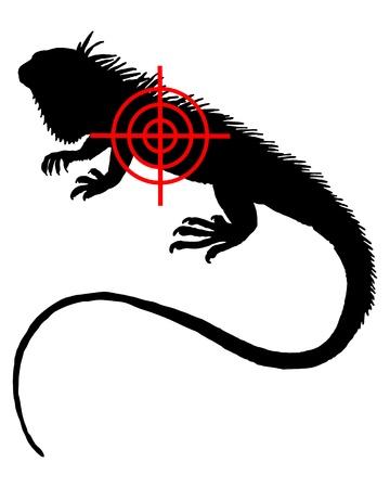 Iguana crosslines Vector