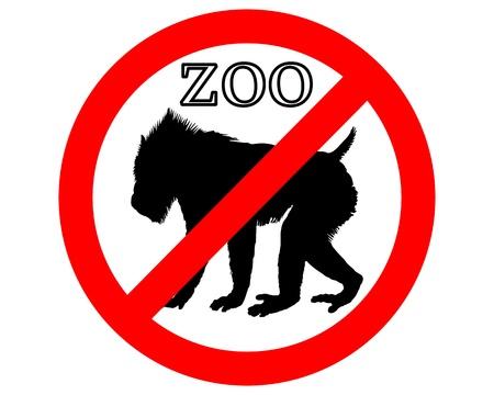 mandrill: Mandrillo nello zoo vietato