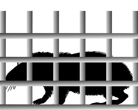 Guinea pig in cage Stock Vector - 9348637
