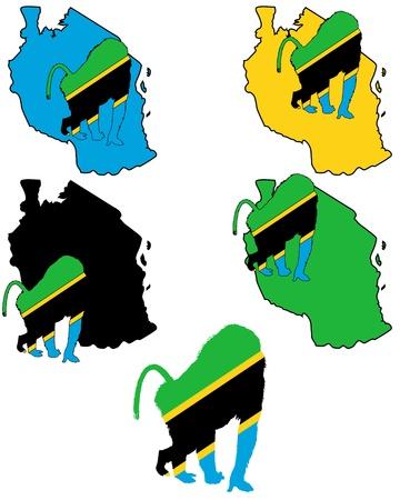 mandril: Tanzania babuino Vectores