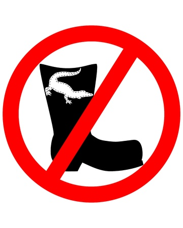 footware: Crocodile leather boots prohibited