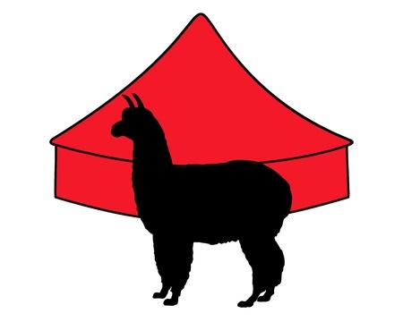 Alpaca in circus  Vector
