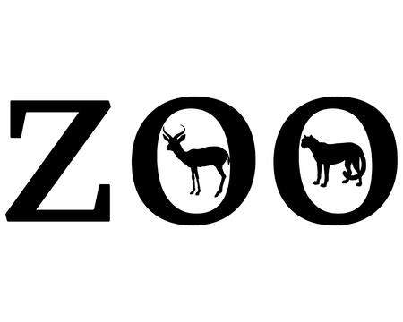 acinonyx jubatus: Zoo animals