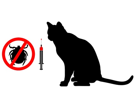 jab: Cat tick vaccination