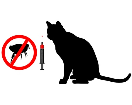 flea: Cat flea vaccination