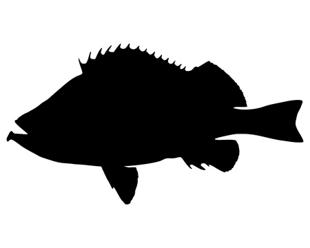 Rose fish Silhouette
