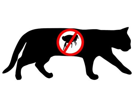 flea: Cat flea prohibited Illustration