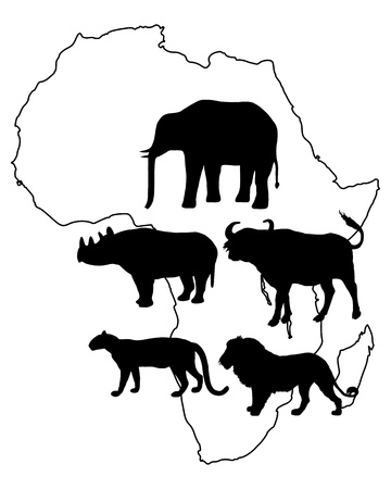 big game: Africa Big Five Illustration