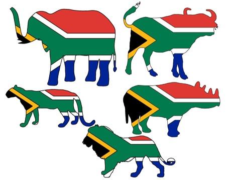 big five: Big Five South Africa  Illustration
