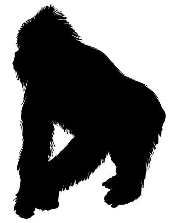 silueta mono: Silueta de gorila