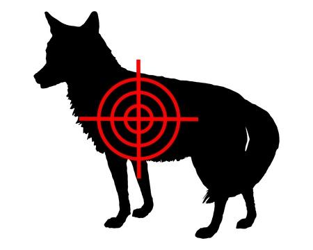 prairie dog: Coyote crosslines Illustration