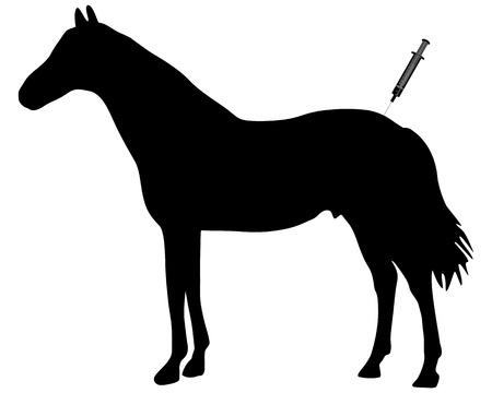 immunization: Immunization for horses Illustration