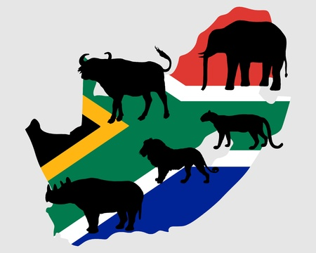 south africa flag: Big Five South Africa  Illustration