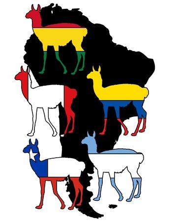 guanaco: Guanaco S�damerika