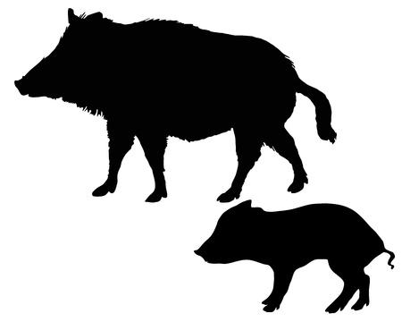 Wild boars silhouettes Ilustracja