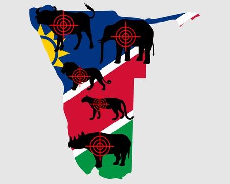 panthera: Namibia cinque grandi attraversare le linee Vettoriali