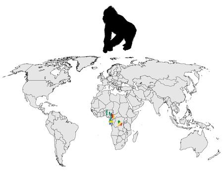 World Gorilla range Vector