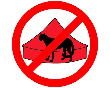 acinonyx jubatus: Cheetah in circus prohibited