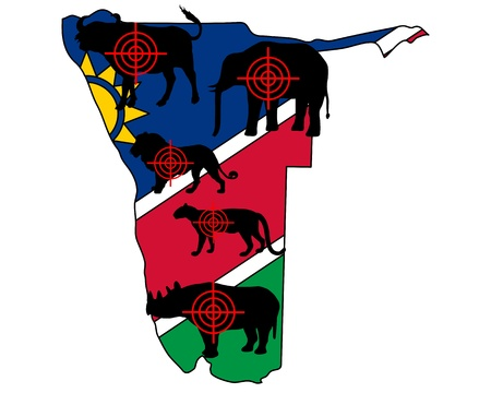 Big Five Namibia cross lines Stock Vector - 9829595