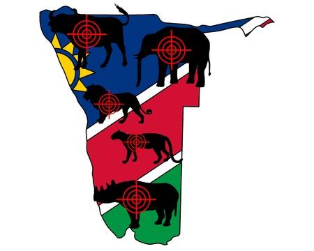big five: Big Five Namibia cross lines Illustration
