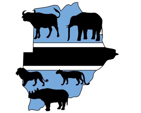 big five: Botswana cinque grandi Vettoriali