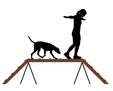 agility people: Woman and dog on dogwalk