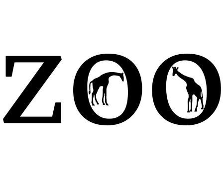 giraffa: Animales de zool�gico