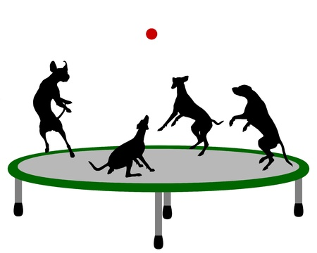 犬のトランポリン  イラスト・ベクター素材