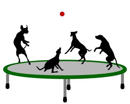 Dog trampoline 向量圖像