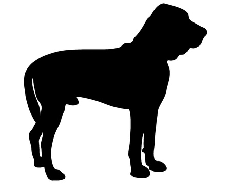 bloodhound: Bloodhound Silhouette Illustration