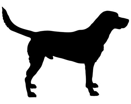 perro labrador: Labrador silueta