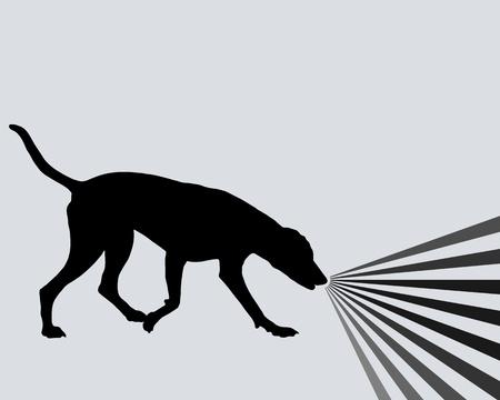 Perro y olores Ilustración de vector
