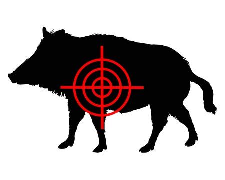 Boar crosslines Vettoriali