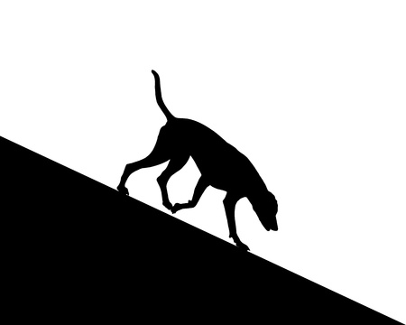 descending: Dog runs downhill